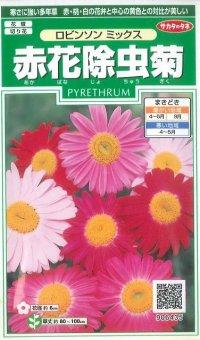 [花種/小袋] 赤花除虫菊 ロビンソンミックス 小袋 サカタのタネ