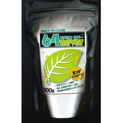 画像1: 植物コーティング剤 64never  300g