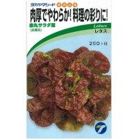 [葉物] 赤丸サラダ菜 小袋 1.5ml    タカヤマシード