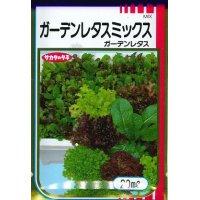 [レタス] ガーデンレタスミックス 20ml サカタのタネ