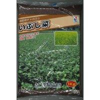 送料無料 緑肥 チャガラシ いぶし菜 1kg タキイ種苗(株)