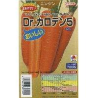 [人参] Dr.カロテン5 ペレット種子 700粒 タキイ交配