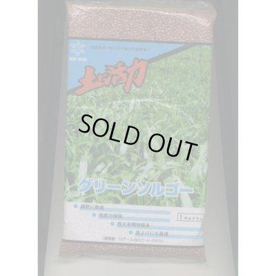 画像1: [緑肥] グリーンソルゴー 1kg 雪印種苗株式会社