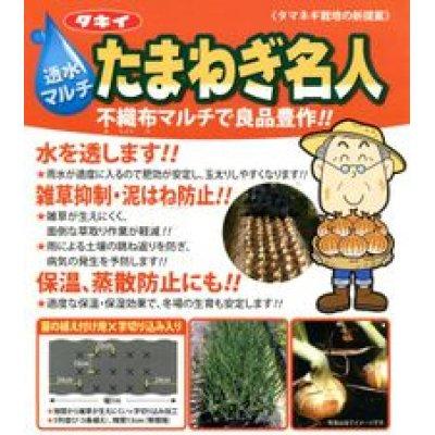 画像2: 農業資材 透水マルチ たまねぎ名人 タキイ種苗