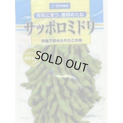 画像1: [枝豆] サッポロミドリ 1L 雪印種苗