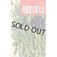 [枝豆] 丹波の黒大粒大豆 50ml タカヤマシード