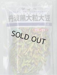 [枝豆] 丹波黒大粒大豆 1dl タキイ種苗