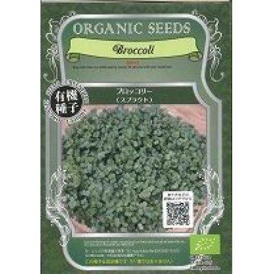 画像1: [有機種子] ブロッコリー (スプラウト) 固定種 14g