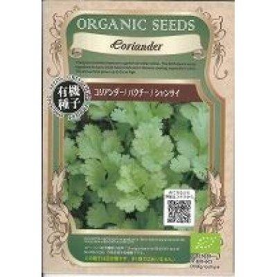 画像1: [有機種子] コリアンダー/ パクチー/ シャンサイ 固定種4g(約340粒)