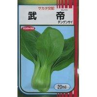[中国野菜] チンゲンサイ 武帝チンゲンサイ 20ml