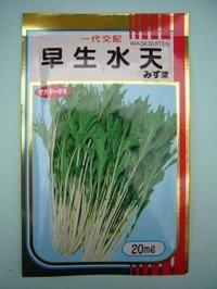 [葉物] みず菜 早生水天 2dl サカタのタネ