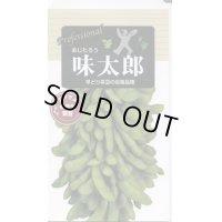 [枝豆] 味太郎 70ml 雪印種苗