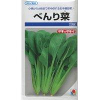 [葉物] べんり菜 20ml タキイ育成