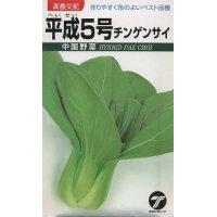 送料無料  中国野菜 チンゲンサイ 平成5号 10ml   高農交配