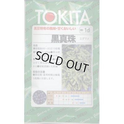 画像1: [枝豆] 黒真珠 1dl トキタ種苗