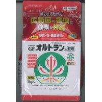 農薬 殺虫剤 オルトラン粒剤