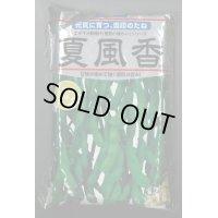 [枝豆] 夏風香 1L 雪印種苗