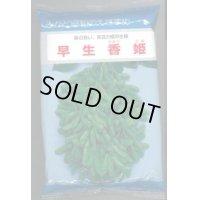 [枝豆] 早生香姫 1L みかど協和