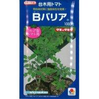 [台木/トマト用] Bバリア 1000粒 (トマト用) タキイ交配