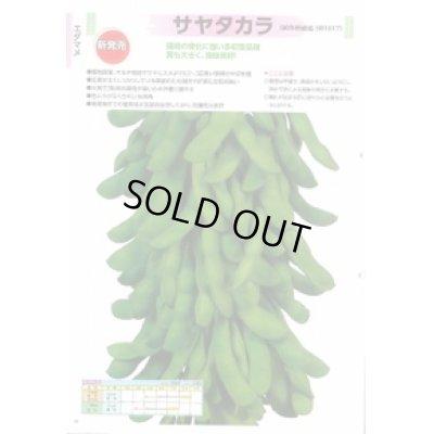 画像2: [枝豆] サヤタカラ 70ml 雪印種苗