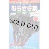 [小松菜] むらさき祭 20ml 渡辺交配