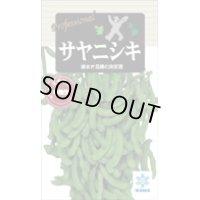 [枝豆] サヤニシキ 70ml 雪印種苗