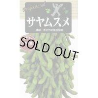 送料無料 枝豆種  サヤムスメ   70ml  雪印種苗