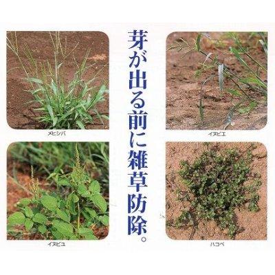 画像2: 農薬 除草剤 ラッソー乳剤 500ml