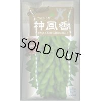 [枝豆] 枝豆 神風香 70ml 雪印種苗