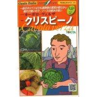 送料無料  イタリア野菜 クリスピーノ 50粒 トキタ種苗