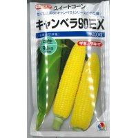 [とうもろこし] キャンベラ90EX 200粒 タキイ種苗