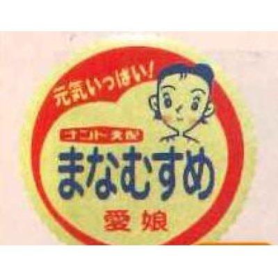 画像1: 青果シール スイカ 愛娘用 1000枚   ナント種苗