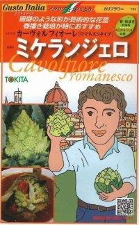 [イタリア野菜] ミケランジェロ 50粒   トキタ種苗