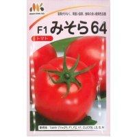 送料無料  トマト種 みそら64  1000粒  みかど協和