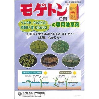 画像2: 農薬 水田用除草剤 モゲトン粒剤 3kg