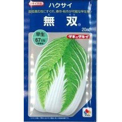 画像1: [白菜] 無双 20ml タキイ交配