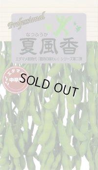 [枝豆] 夏風香 70ml 雪印種苗