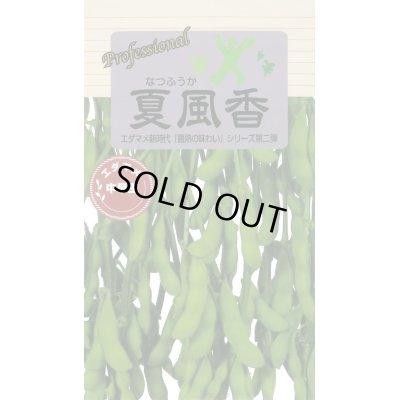 画像1: [枝豆] 夏風香 70ml 雪印種苗