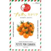 [トマト/マウロの地中海トマト] プチポンカナリア 8粒 パイオニアエコサイエ ンス