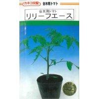 [台木/トマト用] リリーフエース 100粒  カネコ種苗