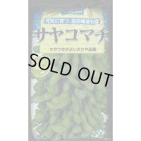 [枝豆] サヤコマチ   1L 雪印種苗