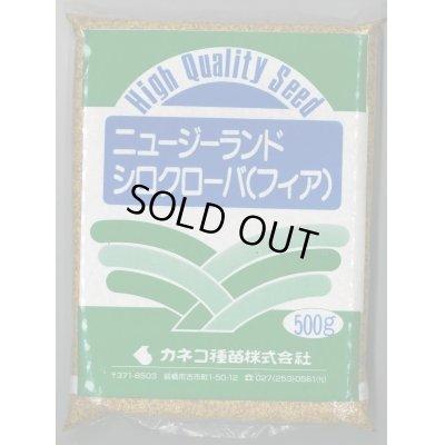 画像1: [緑肥] しろクローバ フィア 500g カネコ種苗