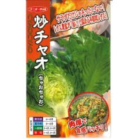 [レタス] 炒チャオ (ちゃおちゃお)ペレット種子 5000粒 ナント種苗