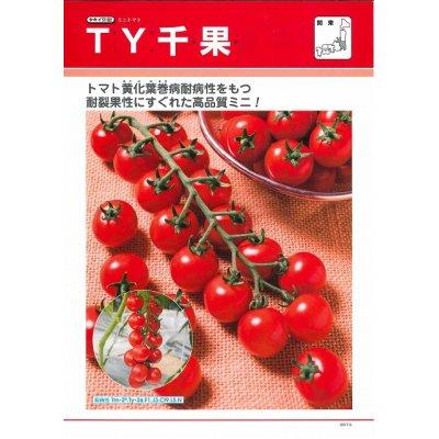 画像2: [トマト/ミニトマト] 送料無料! TY千果 ペレット2L1000粒 タキイ交配