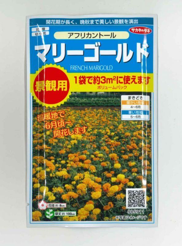 花種 小袋 マリーゴールド アフリカントール 3g サカタのタネ 花種 花種 小袋 春まき グリーンロフトネモト直営
